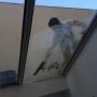 Lavage de baie vitrée
