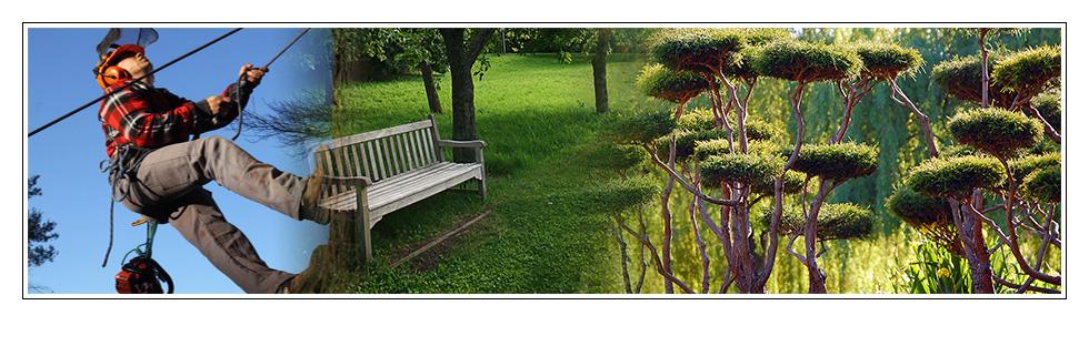 Pns paysagiste avignon for Entretien jardin avignon