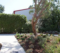 Bô Gardens réalise votre projet d'espace vert