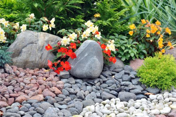 jardinerie id es pour cr er une all e. Black Bedroom Furniture Sets. Home Design Ideas